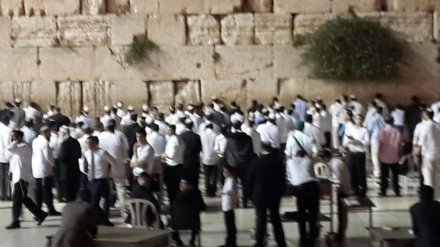 Praying for the teens' safe return at the Western Wall.