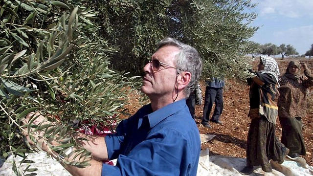 Picking olives in the West Bank in 2002 (Photo: Tzvika Tishler) (Photo: Tzvika Tishler)