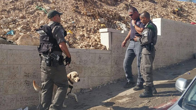 Security forces and the dog (Photo: Israel Police)
