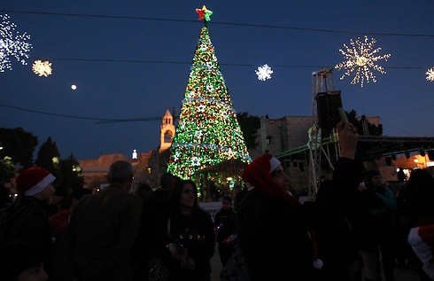 The giant Christmas tree in Bethlehem (Photo: AFP)