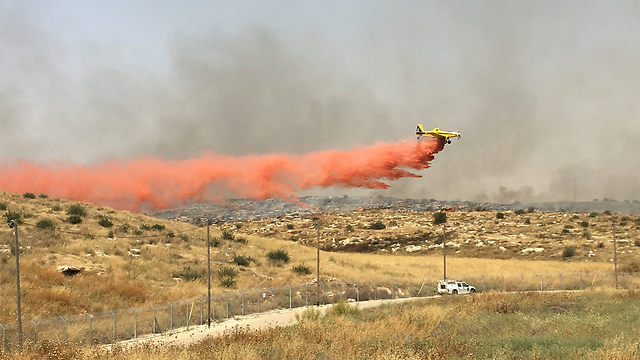 Firefighting plane in Lachish (Photo: Sigal Noy) (Photo: Sigal Noy)