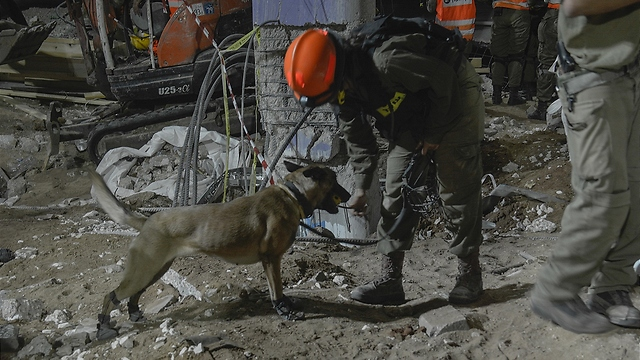 Rescue worker with one of the dogs searching through the rubble (Photo: IDF Spokesman)
