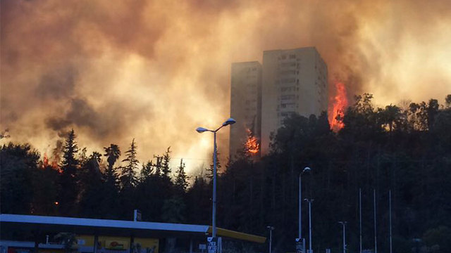 Apartment building ablaze in Haifa (Photo: Evyatar Alkobi) (Photo: Evyatar Alkobi)
