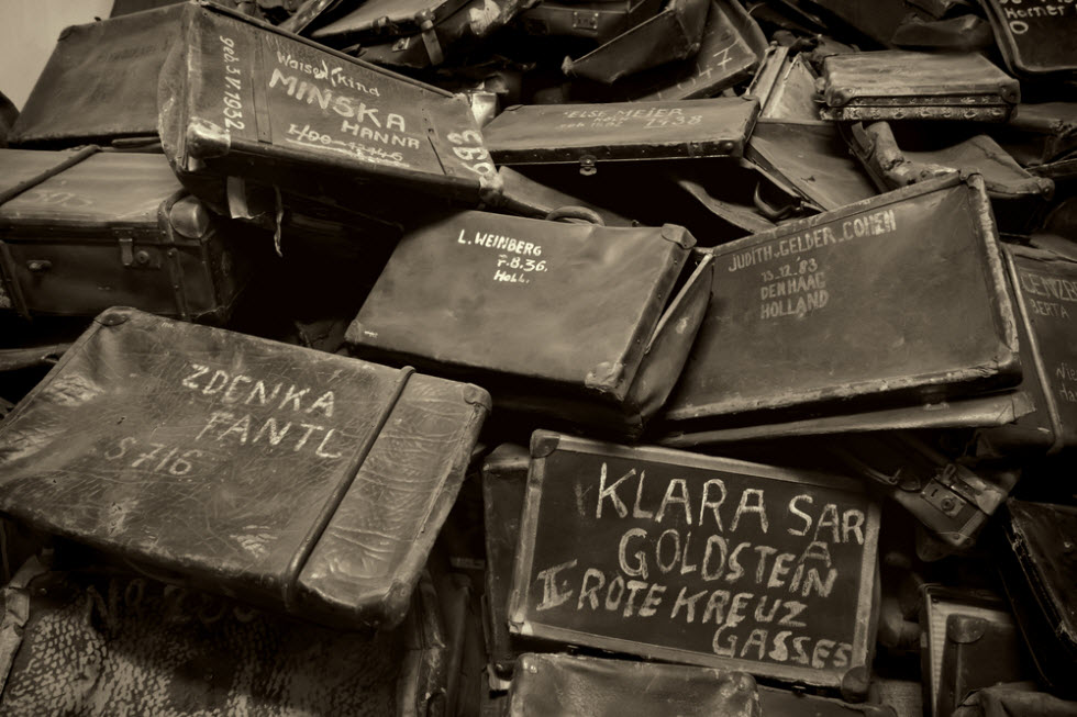 Suitcases looted from Jews at Auschwitz (Photo: Shutterstock) (צילום: shutterstock)