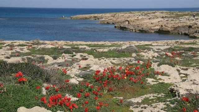 The unspoiled beauty of Habonim beach nature reserve (Photo: Rinat Russo)