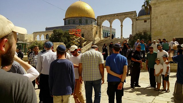 Jewish visitors at the Temple Mount (Photo: Yeraeh organization) (Photo: Yeraeh)