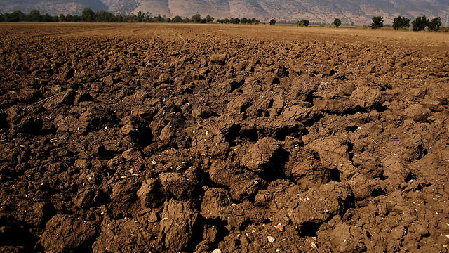 A dry agricultural field is seen in the Hula Valley, northern Israel (Photo: Amir Cohen/Reuters)
