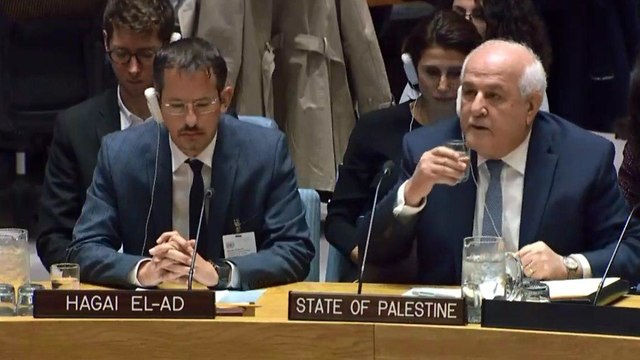 B'Tselem head Hagai El-Ad and Palestinian Ambassador Riyad Mansour (Photo: UN TV)