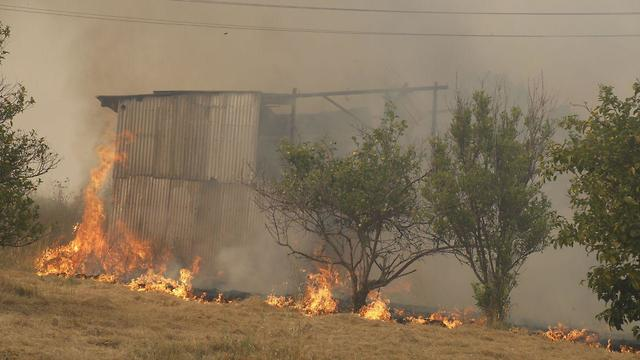 Massive fire in Kibbutz Harel in central Israel (Photo: Shaul Golan)