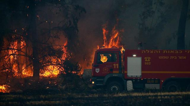 Large firefires destroyed much woodland in central Israel
