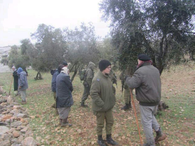 Palestinian olive trees set alight in the West Bank