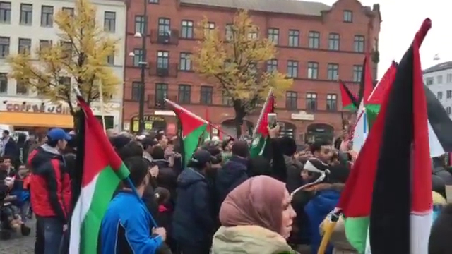 Pro-Palestinian rally in Malmo