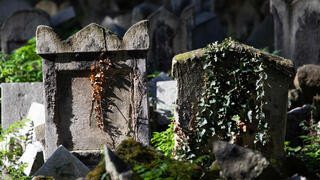 Gravestones are seen at the old Waehring Jewish cemetery in Vienna o