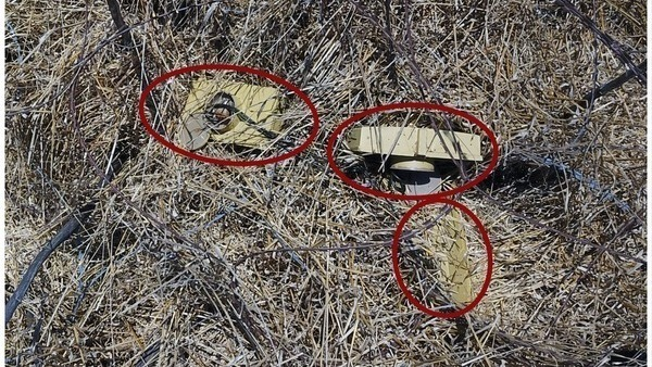 IEDs found hidden in bushes on the Israeli side of the Syrian border on Tuesday