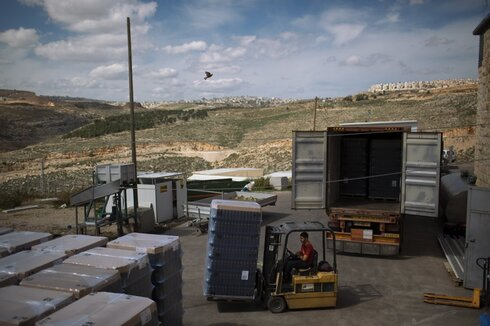 an Israeli worker transports wine bottles in a winery at the West Bank Jewish settlement of Psagot