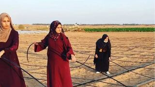 Alnajjar, Qudaih and Aburok working the land they rented in the Khuza'a area.