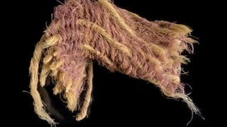 Purple dye found on cloth at Timna copper mines in southern Israel