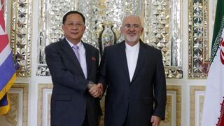 Iran's Foreign Minister Mohammad Javad Zarif (R) shakes hands with North Korea's Foreign Minister Ri Yong Ho during their meeting in the capital Tehran
