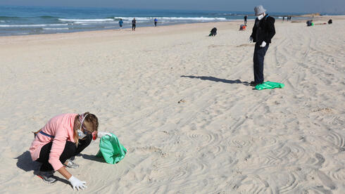 Israeli volunteers search for tar grains while cleaning the Palmachim Beach