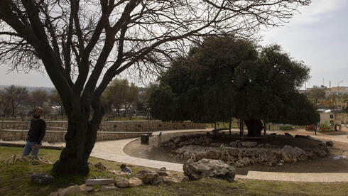 Settler walks near a small promenade built by the Jewish National Fund near the West Bank settlement of Alon Shvut