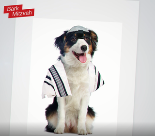 Screengrab from a United Torah Judaism election campaign video likening non-Orthodox Jewish converts to dogs
