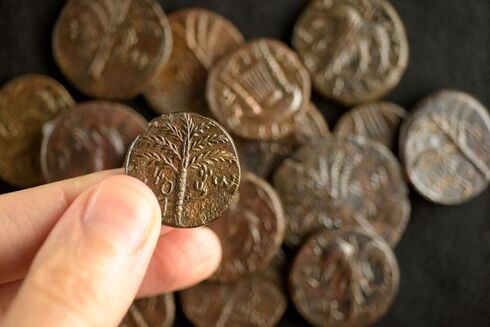 Rare coins dating back to the Bar Kohba period discovered in a Judean Desert cave