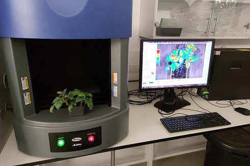 Hebrew U's bio-sensor that detects early signs of plant stress and prevent crop failures from worldwide climate changes