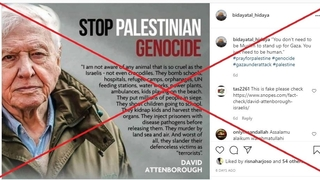 A screenshot of the misleading David Attenborough Instagram post as of May 26, 2021