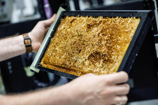 a honeycomb, a part of a robotic beehive developed by Israeli startup Beewise, in Beit Haemek,